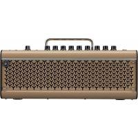 THR30IIA Wireless Acoustic