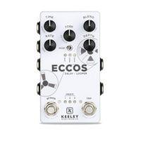 Eccos Delay / Looper