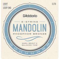 EJ73 Mandolin 010-038