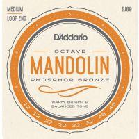 Octave Mandolin EJ80
