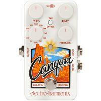 Canyon Delay/Looper