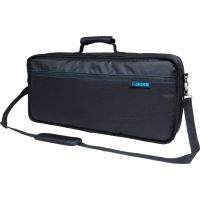 Carry Bag for GT-100